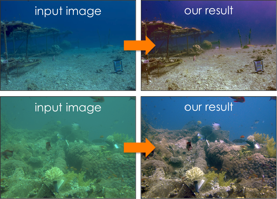 Intelligent Cameras: Overcoming the Challenges of Optical Imaging Underwater and in Haze