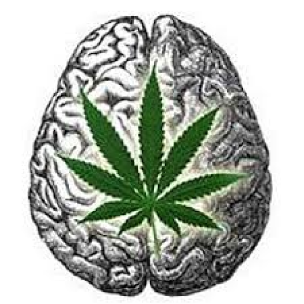 Cannabinoids (Cannabis): Treatment and prevention of neuropsychiatric disorders