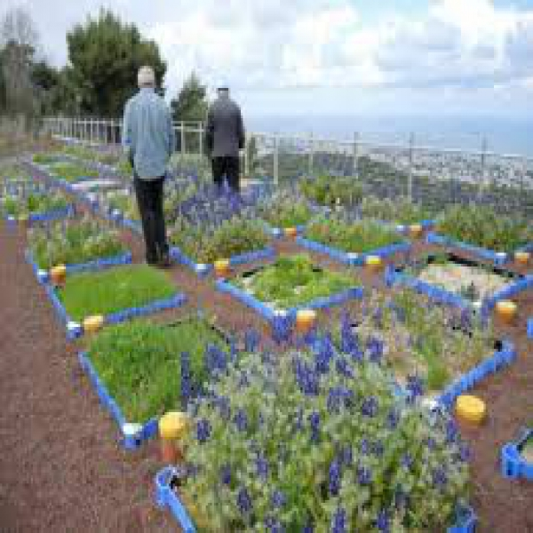 The Kadas Green Roofs Ecology Center