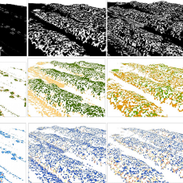 The Future of Remote Sensing: Enabling Advances in Environmental and Ecological Study